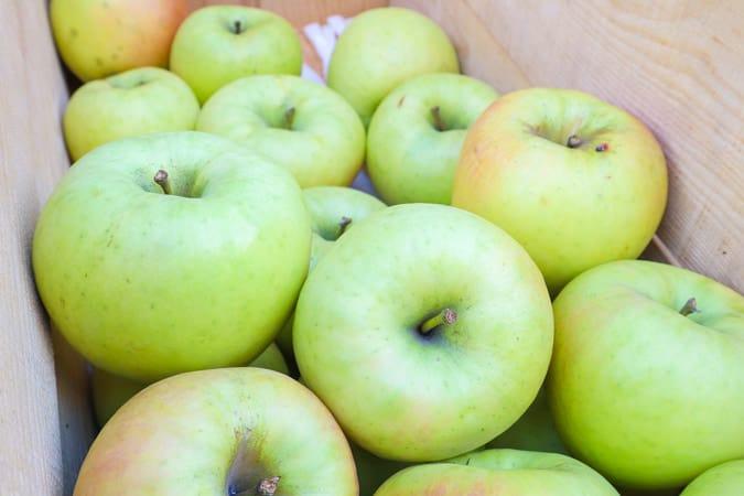 表面「でこぼこ」が、おいしいリンゴを見分ける秘訣